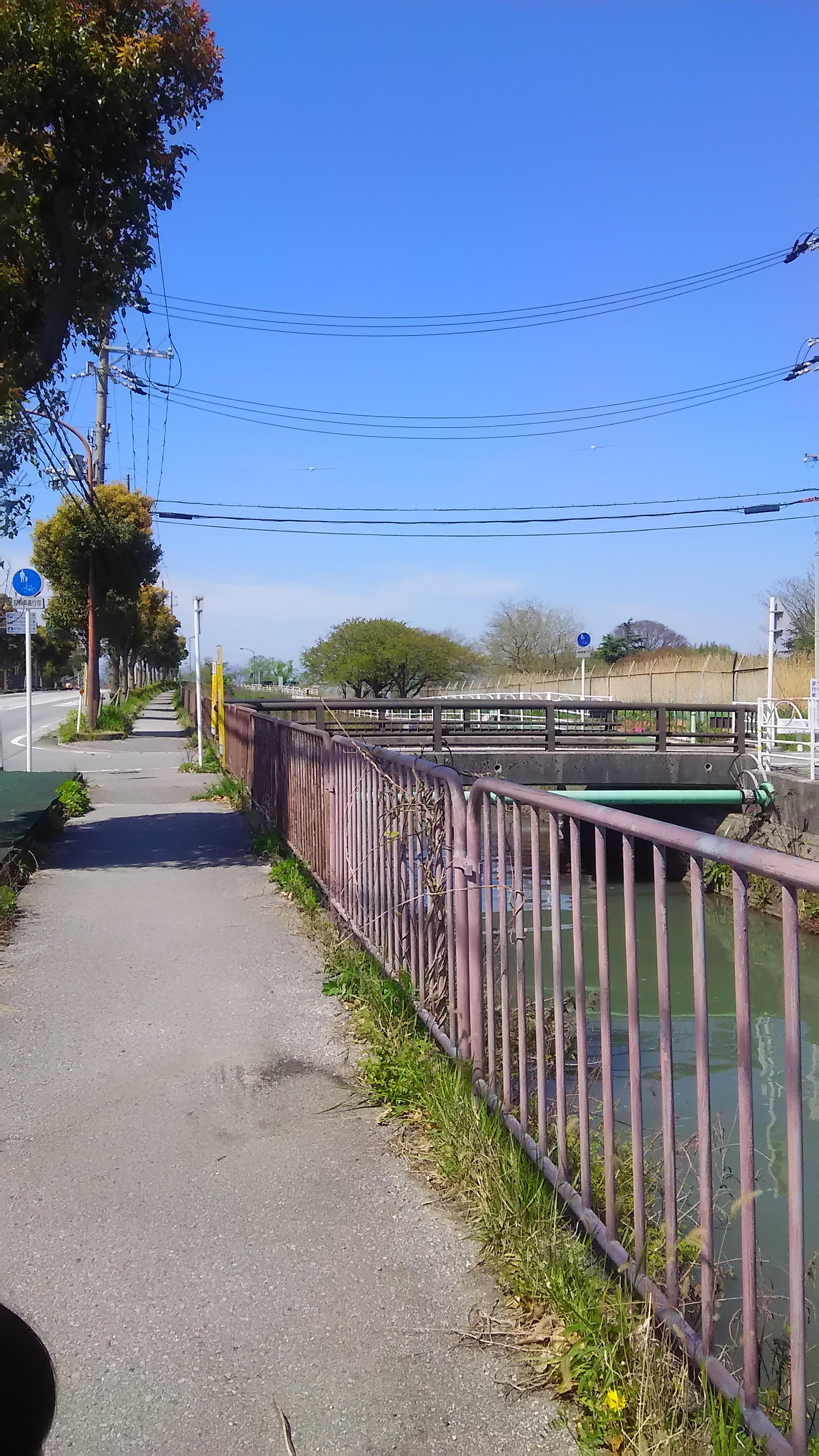 中川製袋化工長浜工場向かいの「美浜橋」を渡り、すぐ右(東)へ